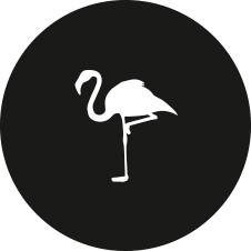Icon_Logos